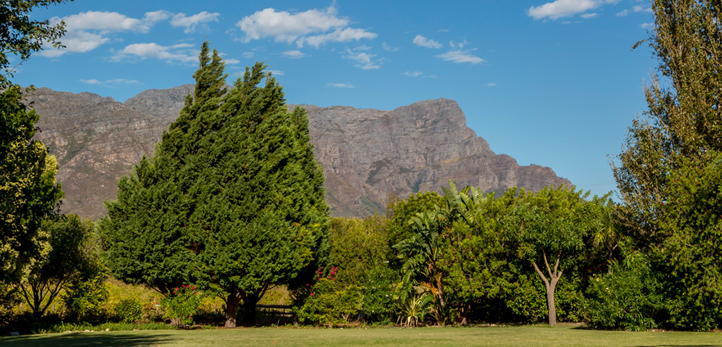 Franschoek Wedding Venue